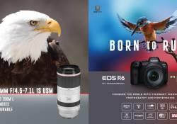 ក្រុមហ៊ុន Canon បង្ហាញនូវ Super-Telephoto L Zoom Lens ដំបូងបំផុតសម្រាប់កាមេរ៉ាប្រភេទ RF System